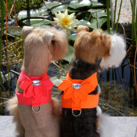 Susan Lanci Water Lily Tinkie Harnesses