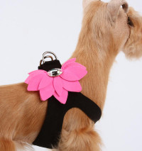 Susan Lanci Two Tone Water Lily Step-In Harnesses
