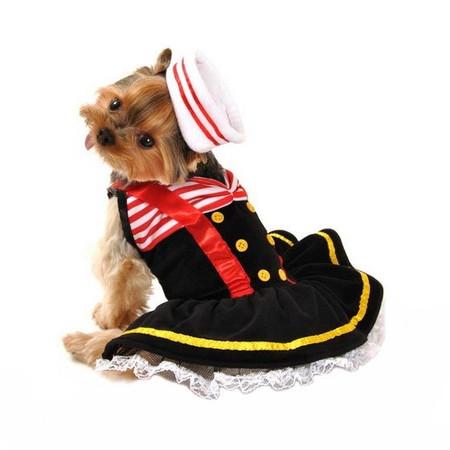 Sweetheart Sailor Dog Costume