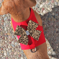 Susan Lanci Two Tone Nouveau Bow Bailey II Harness