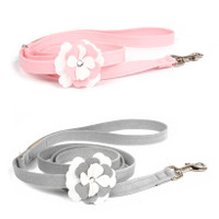 Susan Lanci Special Occasion Leash