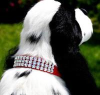 usan Lanci XL Giltmore 3 Row Collar (Wide Ed.)