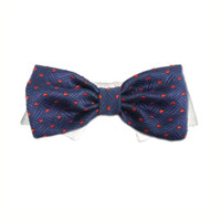 Andrew Bow Tie Collar