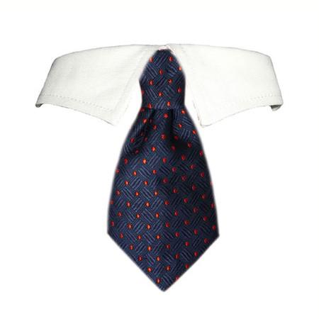 Colton Shirt Tie Collar