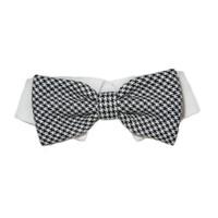 Michael Bow Tie Collar