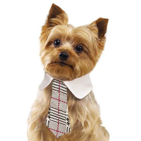 Heritage Dog Necktie