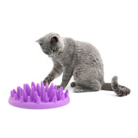 Catch Interactive Slow Feeder for Cats