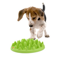 Green Mini Interactive Slow Feeder for Dogs