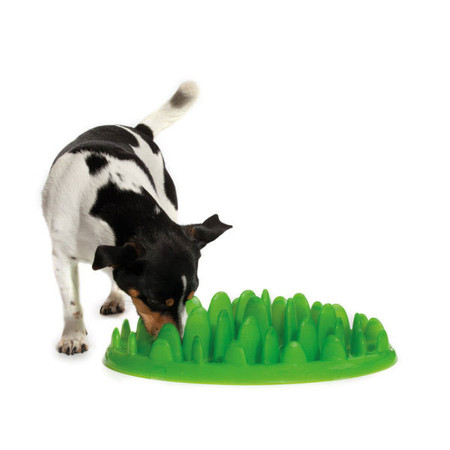 Green Interactive Slow Feeder for Dogs
