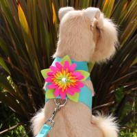 Susan Lanci Island Flower Tinkie Harness