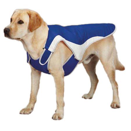 Cool Pup Coat
