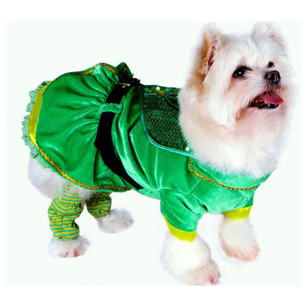 Leprechaun Girl Dog Costume