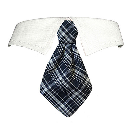 Jayden Shirt Tie Collar