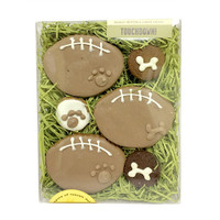 Touchdown! Boxed Dog Treats