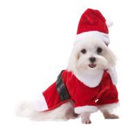 Santa Paws Coat