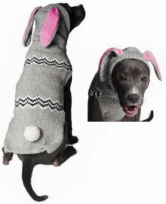 d479108754a bunny img  54988.1439575783.1280.1280.jpg c 2