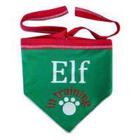 Elf in Training Scarf