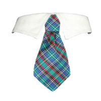 Eli Shirt Tie Collar