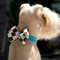 Susan Lanci Windsor Check Nouveau Bow Collar