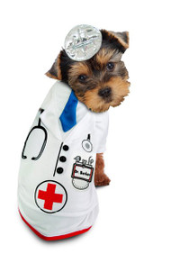 92d32f1eac Doctor Barker Dog Costume