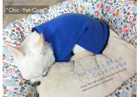 Louisdog The Only Blue Cashmere Sweater