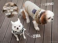 Louisdog Safari Dog Shirts