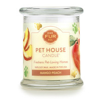 Mango Peach Odor Eliminating Soy Candle