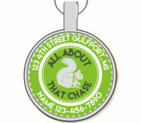 All About That Chase Silver Pet ID Tags
