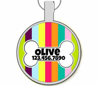 Carnival Stripes Silver Pet ID Tags