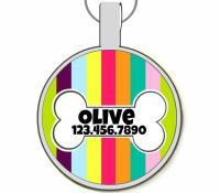 Carnival Stripes Silver Pet ID Tags