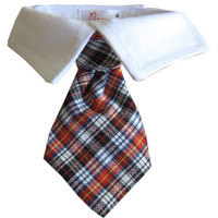 Nicholas Tie Shirt Collar