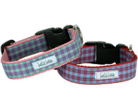 Gingham Style Collar & Lead