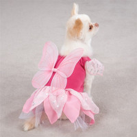 Fairy Tails Dog Costume