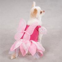 Fairy Tails Dog Costume