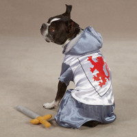 Knight Dog Costume (LAST ONE!)