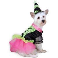 Witchy Business Dog Costume (LAST ONE!)