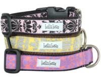 Modern Brocade Collar & Lead