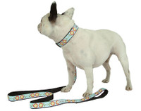 Polka Dot Posey Collar & Lead