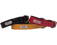 Rain Slicker Collar & Lead