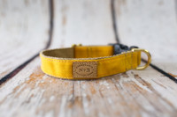 Waxed Cotton Collar & Lead