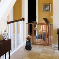 One-Touch Pet Gate II