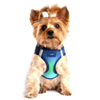 American River Choke Free Ombre Collection Dog Harness