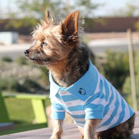 6e192249f Designer Dog Shirts | Small Dog Shirts