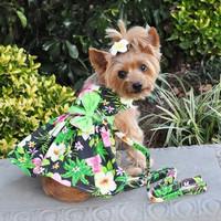 Twilight Black Hawaiian Hibiscus Dog Dress with Matching Leash