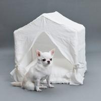 Louisdog Peekaboo Italian Linen House