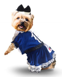 Alice Dress Dog Costume