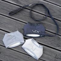 Louisdog Padded Harness Set