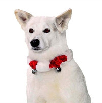 Red Bell Collar with White Trim
