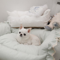 Louisdog Lala Boom Bed