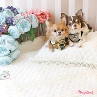 Wooflink Luxe Playmat & Cushion Set